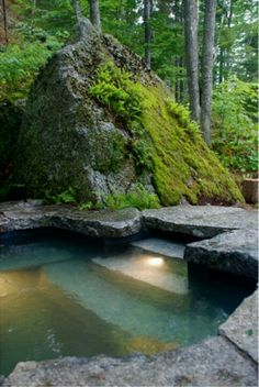 Love moss and rocks and if I were to have a pool this is one to dream of!!!