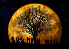 This article suggests a way toward Oneness that could help unite our world. Much love, Art Moon Pictures, Moon Pics, Moon Images, Pictures Images, Under The Moon, Beautiful Moon, Super Moon, Harvest Moon, Jolie Photo