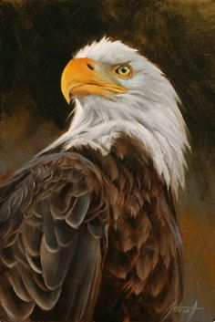 Edward Aldrich - Another! Eagle Images, Eagle Pictures, Aigle Animal, Eagle Drawing, Eagle Painting, Eagle Art, Eagle Totem, Eagle Tattoos, Airbrush Art