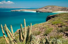 Baja, CA is a truly amazing place to see and explore. Highly recommended!