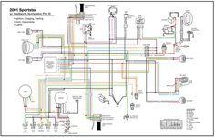 12 Harley Davidson Sportster Engine Wiring Diagram Engine Diagram Wiringg Net Motorcycle Wiring Sportster Wiring Diagram