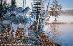 www.wildwings.com DirectionsWEB fn_webcart_zoomImage.php?img=A423702571d.jpg