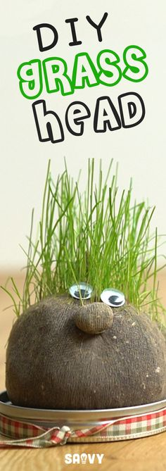 "Remember Chia Pets? It was so much fun to watch them grow! Now you can make your own grass head at home using pantyhose, soil, and grass seeds...it's so simple! This is an easy project that's perfect for kids to help with. They'll love watching the grass ""hair"" grow and can give their pets fancy haircuts!"