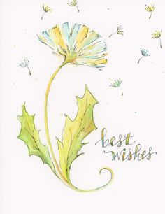 Linda Arandas botanical greeting card