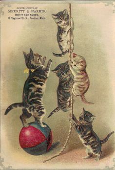 Vintage Trade Card (c. 1880) Artist: Helena Maguire???