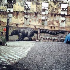 ROA New Murals In Panama City