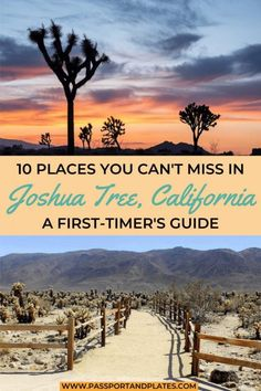 Heading to Joshua Tree National Park but don't want to hike the whole time? These are the best things to do in Joshua Tree besides hike. Cool Places To Visit, Places To Travel, Travel Destinations, Travel Usa, Travel Tips, Travel Articles, Canada Travel, Travel Guides, California Travel Guide