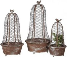 Bird Planters with Wire Cloche - Set of 3
