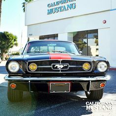 1965 Mustang Black with Red Stripe GT