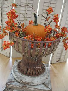 ChiPPy! - SHaBBy! Rusty... Crusty... METAL PLANTER, accented with Pumpkin & Bittersweet... BeSt!*!*!