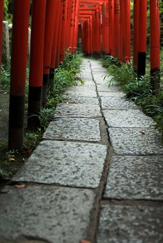 Narrow Path to the Nezu Shrine, Tokyo, Japan