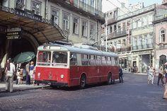 Bus Terminal, Road Train, Bus Coach, Busses, Bus Stop, Public Transport, Rue, Portuguese, Transportation