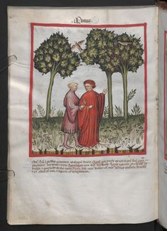 Folio 102v (page 208). Tacuinum sanitatis, Codex Vindobonensis, series nova 2644. North Italy, probably Verona, 1380-1399.