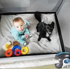 """The terms """"dog mom"""" and """"dog dad"""" have gained popularity recently, thanks to social media and a bombardment of products aimed at doting owners. But what happens when pooch parents find out they're becoming people parents?"""
