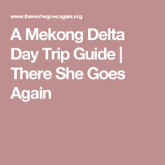 A Mekong Delta Day Trip Guide | There She Goes Again