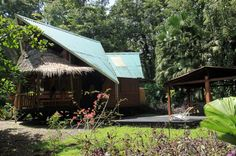 tree house lodge beach house   - Costa Rica