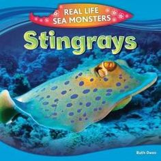 Some stingrays are small, and some have wingspans of over 20 feet. Some are gentle, passive hunters while others electrocute their prey to death.