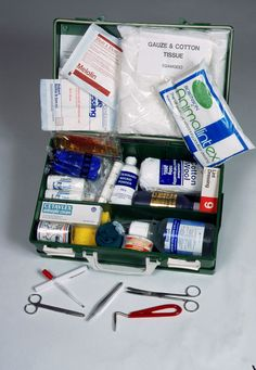 Find out what should go into a horse first aid kit. Be ready for emergencies with basic emergency veterinary supplies.