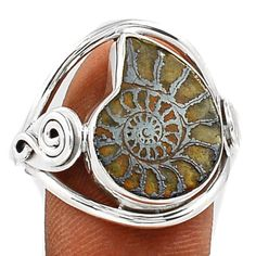 Fossil-Pyrite-Ammonite-925-Sterling-Silver-Ring-Jewelry-s-9-5-SR113242