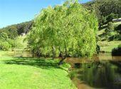Otways retreat - Pennyroyal Lake