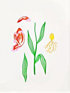 ' Flower Anatomy ' Flower Tattoo Idea
