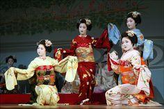 Kyo Odori: A Brilliant Brocade of Chrysanthemums | da mboogiedown