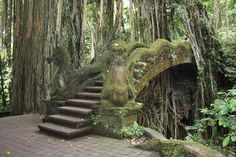 Dragon Bridge of The Sacred Monkey Forest in Ubud, Bali. Ouvrages D'art, Stone Stairs, Ubud, Abandoned Places, Abandoned Houses, Stairways, Architecture, Garden Bridge, Places To See