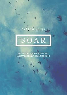 """""""But those who hope in the Lord will renew their strength"""" (Isaiah 40:31). #bibleverse #quotes"""