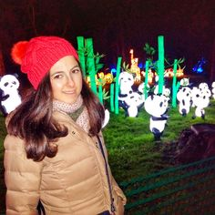 The Magical Lantern Festival makes it London premier  at Chiswick Gardens in London, transforming the environment into an extravaganza of lights, culture, art and cuisine. I loved it  Londra da Chiswick parkta gerceklestiren isiklarla suslu yaratici fikirler gorulmeye degerdi.ben cok sevdim