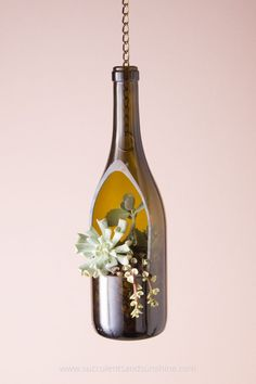 love this hanging wine bottle planter with succulents!I love this hanging wine bottle planter with succulents! Wine Bottle Planter, Wine Bottle Art, Bottle Garden, Diy Bottle, Hanging Succulents, Hanging Planters, Hanging Gardens, Cutting Wine Bottles, Cut Bottles