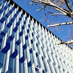 Glass facade at the Ombu #Building #architecture #archdaily