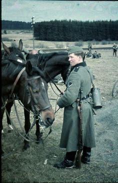 German Soldier with Horses from the 73rd Infantry Division