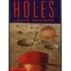 essay on the book holes