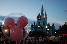 Disney at dusk.
