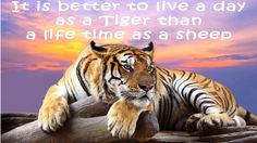 It is better to live for one day as a tiger, than a life time as a sheep