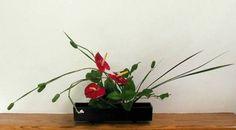 ikebana horizontal arrangement
