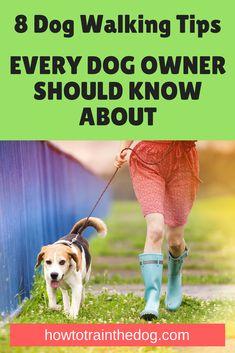 8 Dog Walking Tips (Every Dog Owner Should Know About) #dogtraining #dogtrainingtips #dogwalking #puppytraining