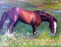 A visual display of paint works by Canadian artist Cheryl Todd Shergold. Residing in Crossfield, Alberta - Cheryl paints in oils, acrylics and watercolor. Visual Display, Canadian Artists, Cheryl, Oil On Canvas, Horses, In This Moment, Watercolor, Artwork, Painting