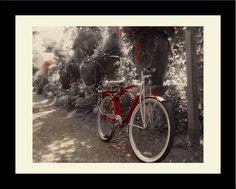 Two Wheelin' Garden Bike Framed Graphic Art