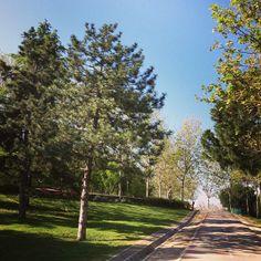 Parque de Enrique Tierno Galván en Madrid, Madrid