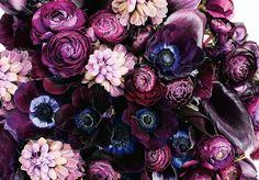 Bohemian Blooms (instagram: the_lane)