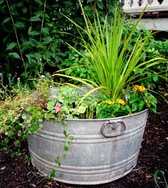 I did this idea this summer--I put wave petunias and golden moneywort in my wash tub planter--it looks pretty good.  I  put the washtub in one of my flower beds where a bunch of weeds were growing.