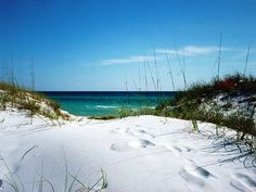 Grayton Beach - A 20-mile long stretch of coastal dune lakes that are so rare they are only found in Walton County and remote portions of Africa.
