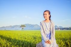 A Little Girl in the paddy field Stock Image