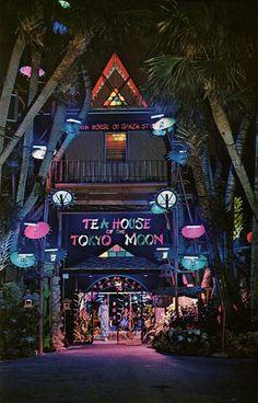 Tea House of the Tokyo Moon Ft. Lauderdale Florida - Travel Miami - Ideas of Travel Miami - Tea House of the Tokyo Moon Ft. Places In Florida, Florida Vacation, Florida Travel, Miami Florida, Florida Beaches, South Florida, Travel Usa, West Palm Beach Florida, Florida 2017