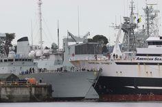 Fishing trawler crashes into docked navy ship at Esquimalt base, six people hurt Photo: ADRIAN LAM, License: N/A