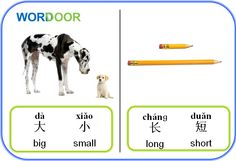 Wordoor Chinese - Antonyms # Big vs small ; long vs short