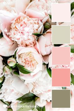 Spring Color Palette, Green Colour Palette, Pink Palette, Colour Schemes, Color Combinations, Peony Colors, Pink Flowers, Colours, Soft Pink Color