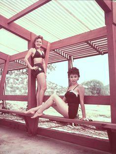 "hollyhocksandtulips: "" Terry Moore and Rita Moreno "" Golden Age Of Hollywood, Hollywood Stars, Old Hollywood, Rita Moreno, Kim Novak, Ava Gardner, Life Is Like, Famous Women, Vintage Beauty"