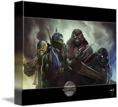 Teenage Mutant Ninja Turtles by Rob Joseph